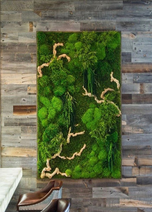 Moss_Artwork_on_Wall.jpeg